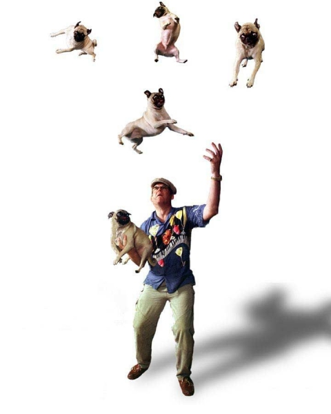2743charles-johnson-pug-juggler-2743dpia